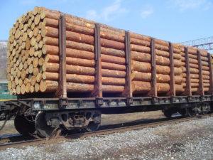 О предоставлении декларации о сделках с древесиной