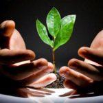 Венчурное инвестирование: утопия или реальность?